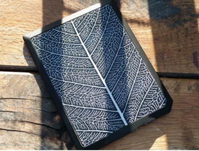Bookeen solar e-reader cover photo